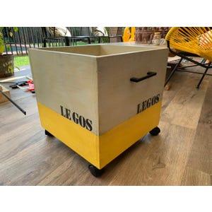 Caja Organizadora Legos/Imanix