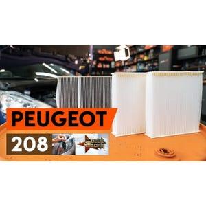 filtro cabina Peugeot 208