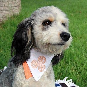 Bandana Mascota L Trisquel naranjo Cloo